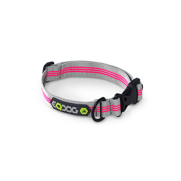 Classic Collar™ Pink Stripes