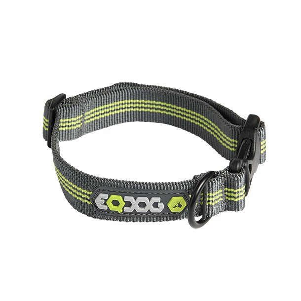 Classic Collar™ Green Stripes